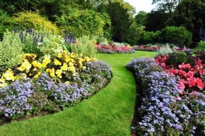 Beautiful garden landscape design