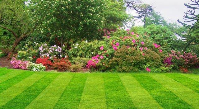 Stunning Garden Landscapes